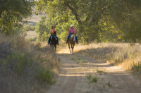 The Lure and Lull of Limestone Canyon Equestrian Ride